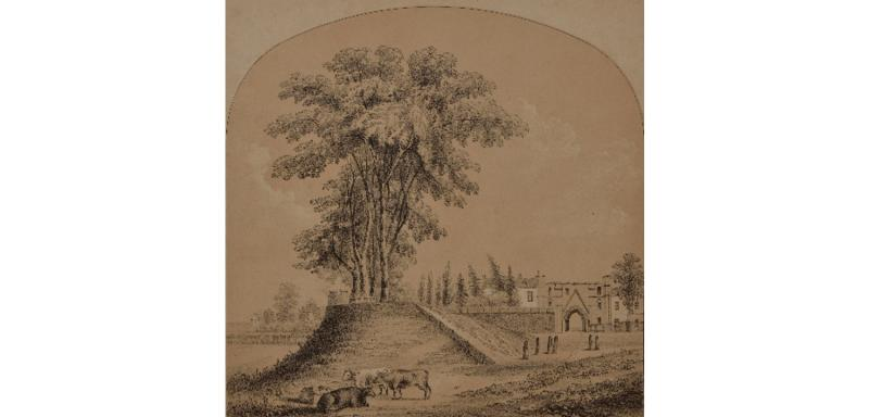 Forbury Hill, Reading from the north in 1850